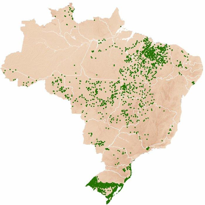 Brazil Ricepedia - Us rice production map