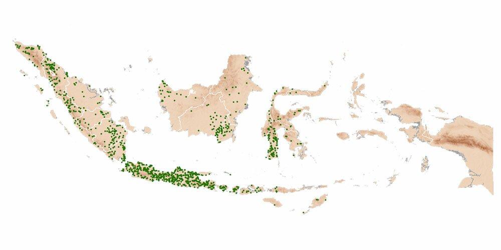 indonesia ricepedia