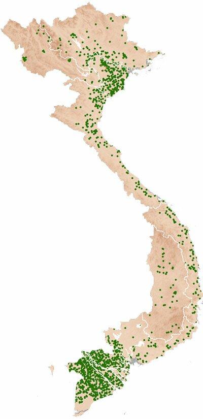 Vietnam - Ricepedia